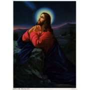 "Jesus Praying Print cm.19x26 - 7 1/2""x 10 1/4"""
