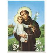 "St.Anthony Print cm.19x26 - 7 1/2""x 10 1/4"""