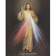 "Divine Mercy High Quality Print cm.20x25- 8""x10"" English"
