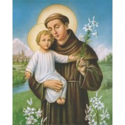 "St.Anthony High Quality Print cm.20x25- 8""x10"""