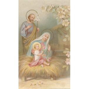 http://monticellis.com/3456-3752-thickbox/holy-card-of-the-nativity-cm7x12-2-3-4x-4-3-4.jpg