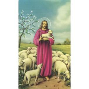 http://monticellis.com/3502-3810-thickbox/holy-card-of-jesus-the-shepherd-cm7x12-2-3-4x-4-3-4.jpg