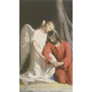 http://monticellis.com/3527-3837-thickbox/holy-card-of-the-guardian-angel-cm7x12-2-3-4x-4-3-4.jpg